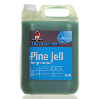Selden Pine Gel Floor Cleaner General Cleanstore
