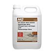 HG 17 Shine Restoring Tile Cleaner (5 ltr)